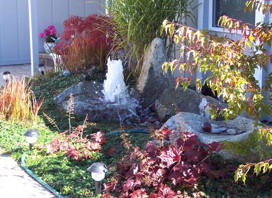 Low maintenance landscaping that thrives in the Northwest.